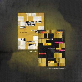 Stray Kids – Clé 2: Yellow Wood